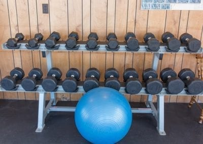 Exercise Workout Weights
